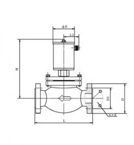 东北ZCGF15-50系列2/2常温中压电磁阀